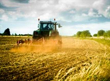 Agricultural Sales & Lettings